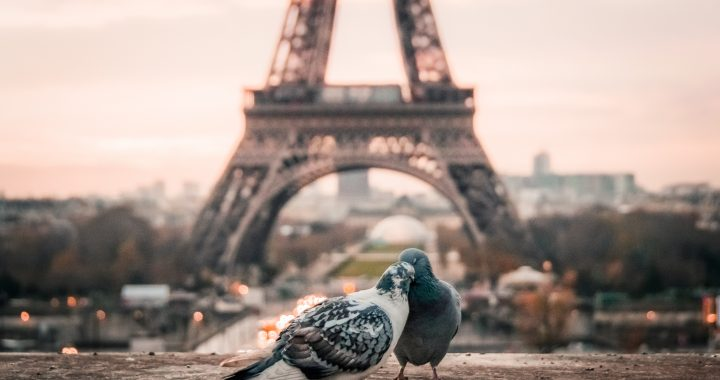 Voci dal mondo: Parigi!