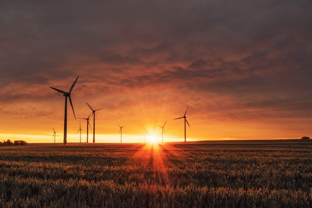 Covid- 19 e Green economy