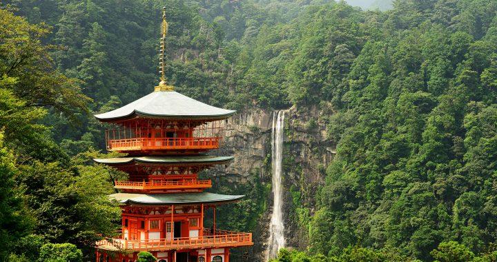 Sokushinbutsu: la via per l'immortalità