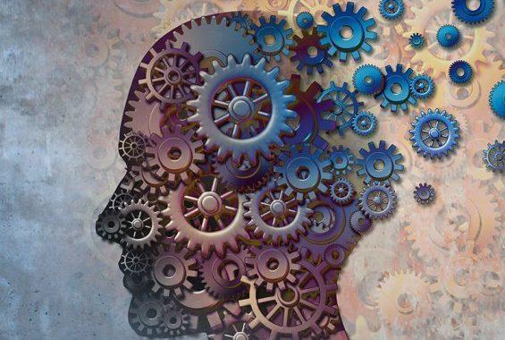 La memoria: i differenti tipi nel singolo e nel gruppo.