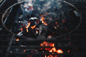 L'origine del carbone in un paradiso ancestrale